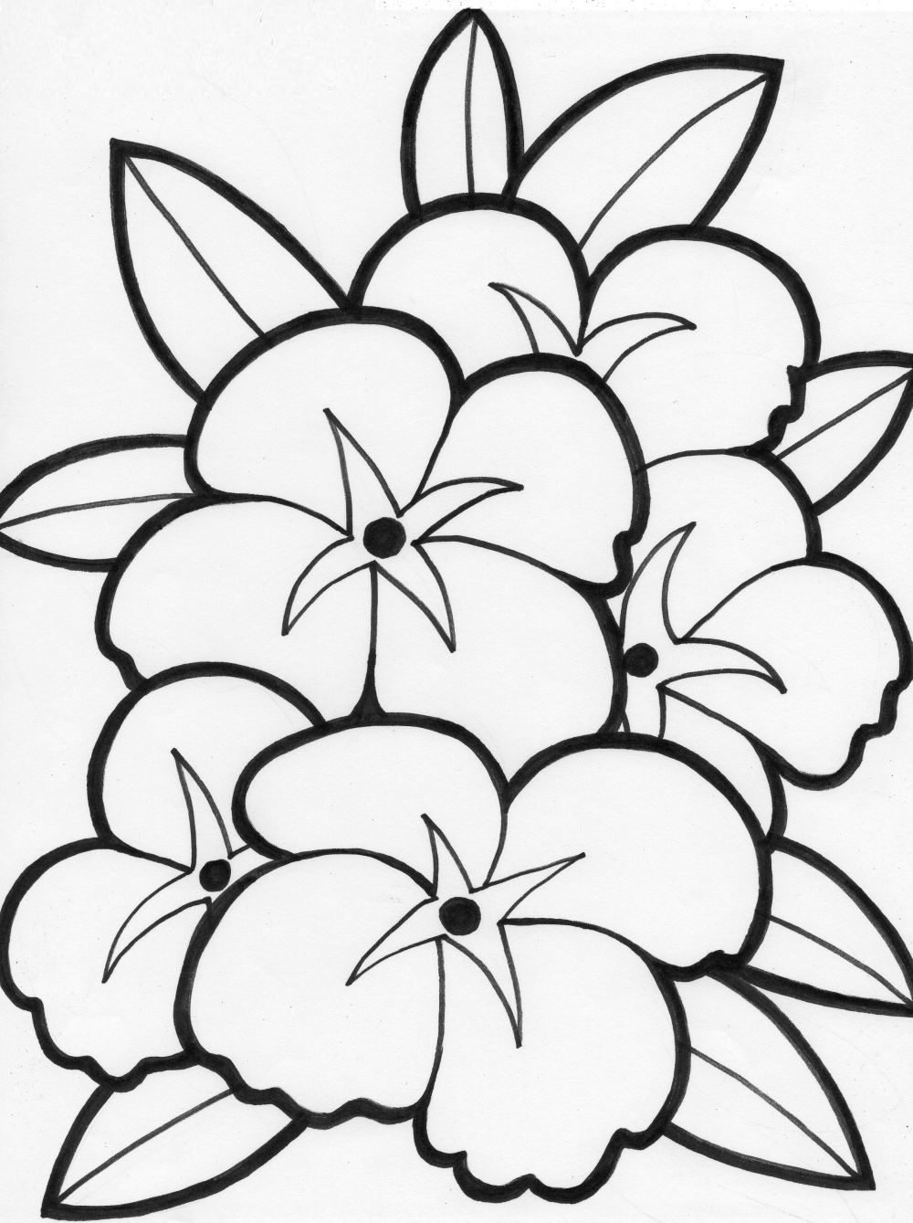 Free Coloring 3