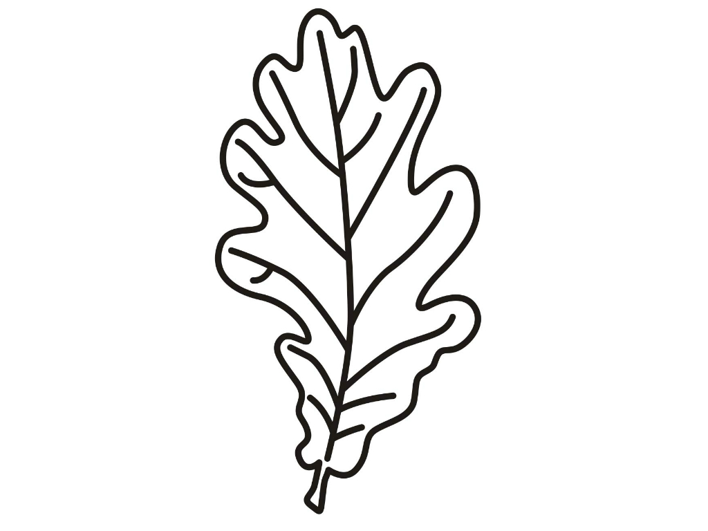 leaf coloring page 2