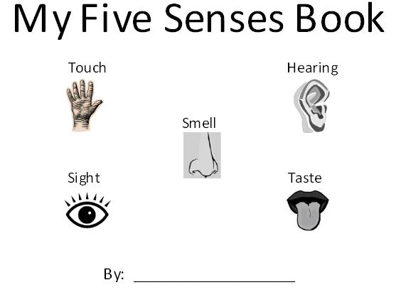 free preschool printables five senses 2