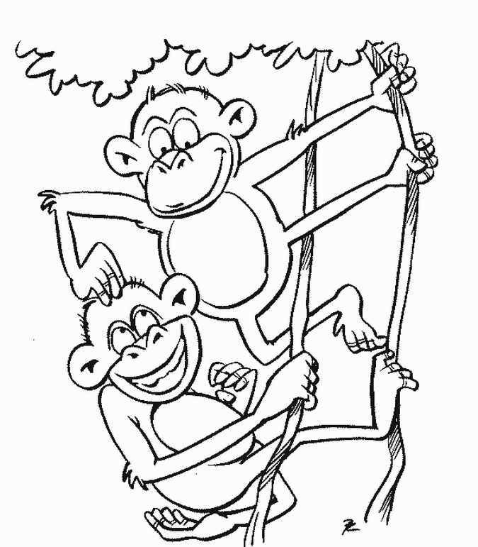 Coloring Pages of Monkeys 10