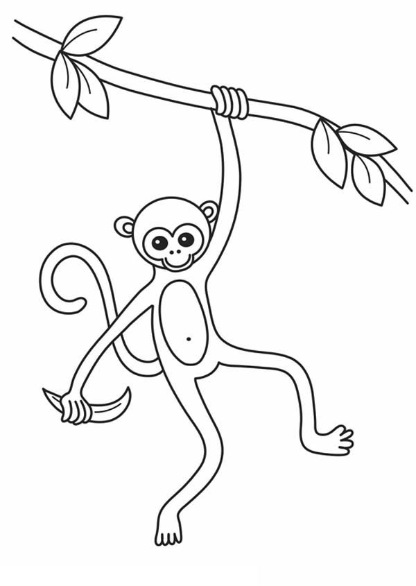 Coloring Pages of Monkeys 5