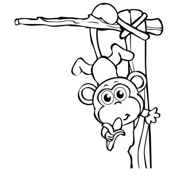 Coloring Pages of Monkeys 8