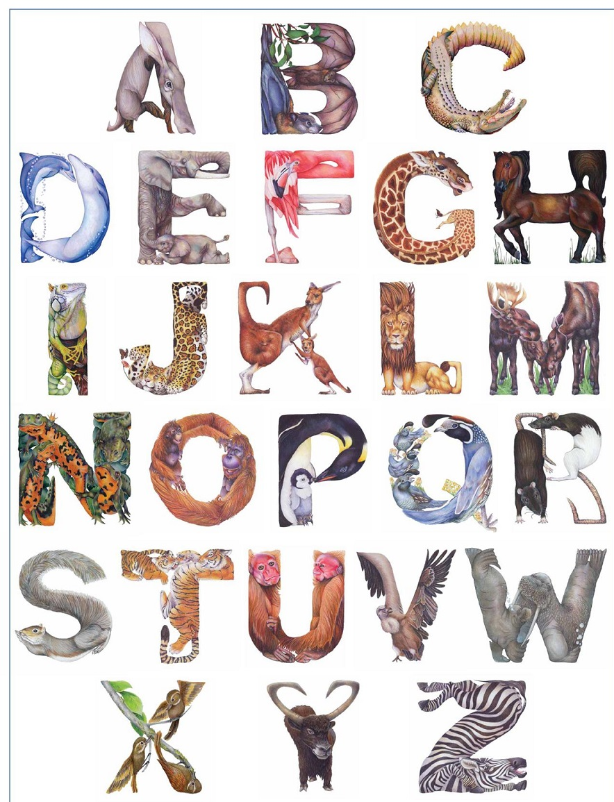 animal shaped letters 1