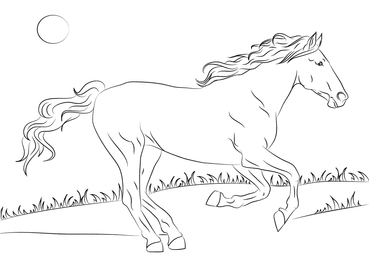 color-pages-of-horses-activity
