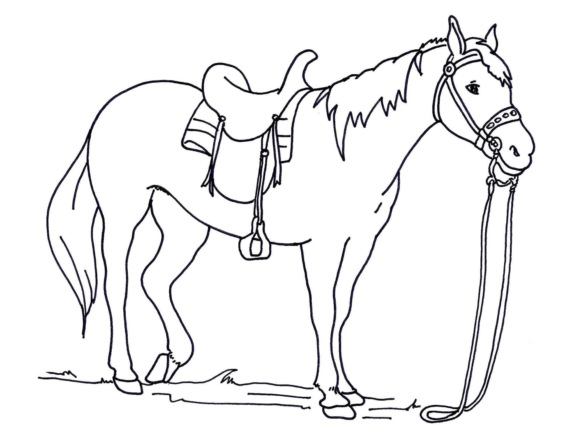 color-pages-of-horses-printable