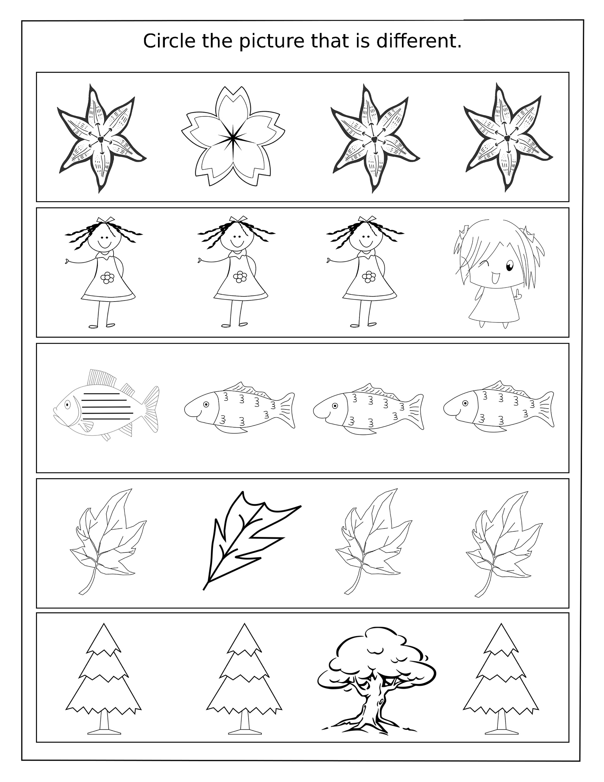 same-and-different-worksheets-activity