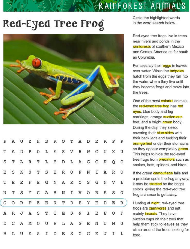 frog word search practice