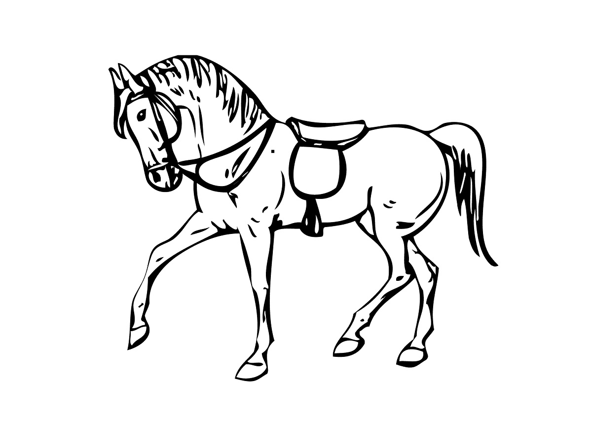 horse pictures for kids image
