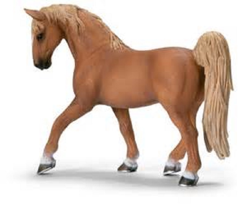 horse pictures for kids page