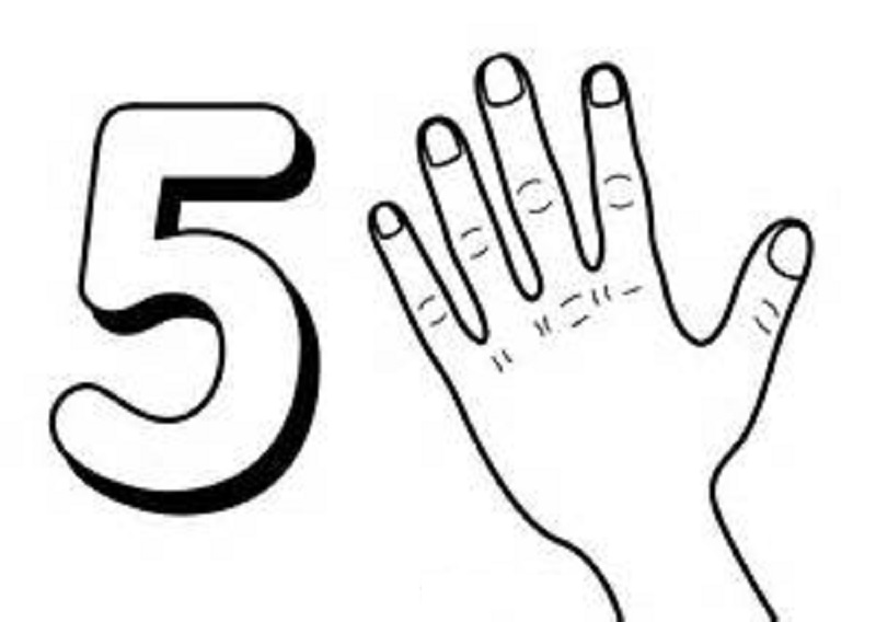 picture of the number 5 to learn