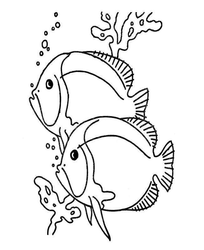 color pages of fish to print